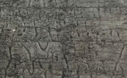 Đá marble xám được ứng dụng ra sao?