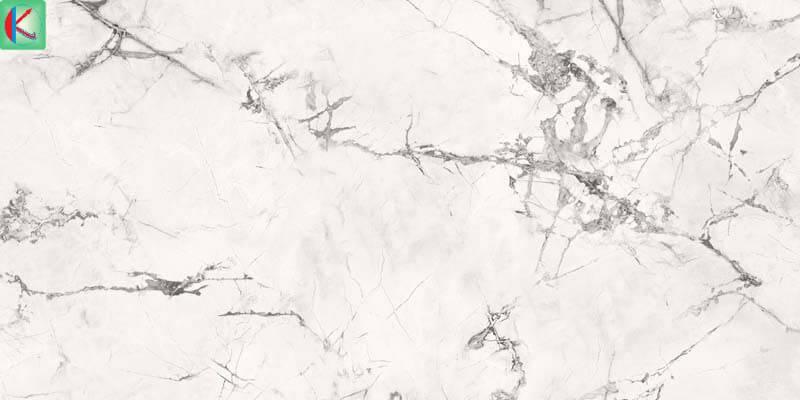 White Spider Marble