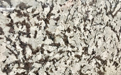 Granite delicatus white